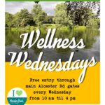 Wellness Wednesdays poster