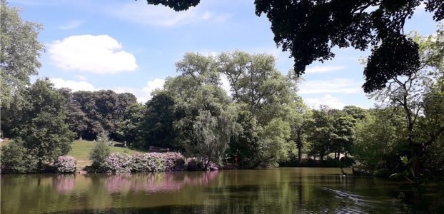 A year in review – 2020 in Moseley Park and Pool